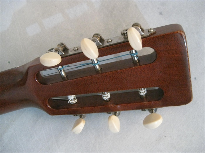 Small Dog Case Cover Mandolin