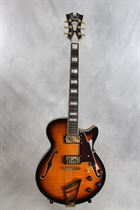 D'Angelico (new) EX-SS Semi Hollow Single Cutaway in Vintage Sunbur